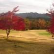 紅葉も色づき秋も終盤を迎えました。