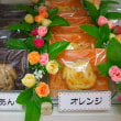 くまさんのぼうけん10/22 シフォンケーキとクッキーのお店うさぎとみかん
