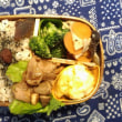 今日のお弁当 (11月21日)