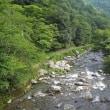 73 つつじ尾根から愛宕山を経て地蔵山 2017.08.17