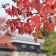 望遠レンズで松江城の紅葉
