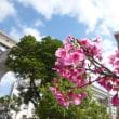 3泊4日の沖縄旅行 その2