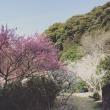 春 春 春