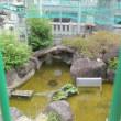 土佐稲荷神社 その2   2018.08.17