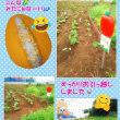 新しい畑に~(^^)/