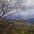 面ノ木原生林に行きました。