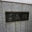 ソメイヨシノ 東京都目黒区目黒川沿い(7)天神橋、千歳橋