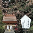 中央区上溝 亀が池八幡宮を参拝2