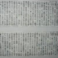 「自由と平和を愛し、文化をすすめる」文化の日*日本国憲法公布の日