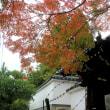 京都・街歩きⅡ