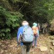 2 堂床山(860m:安佐北区)登山  林道を「加賀津の滝」へと