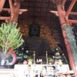 新年会、奈良公園