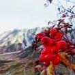 立山~別山2017年10月5日