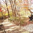 みんなで紅葉狩り@那須高原
