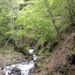 安曇野の宿から・秘境の新緑と清流を独り占め