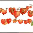 真っ赤に紅葉して お花のように並んでいます