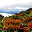 秋田駒ヶ岳の噴気活動と田沢湖