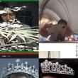 皇室財産簒奪疑惑