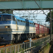 2017年8月24日 東海道貨物線 東戸塚 EF66-128 5094レ