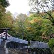 戸隠神社・奥社の紅葉
