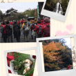 自治会親睦旅行と滝畑ハイキング