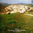 ◇クラシック音楽LP◇アリシア・デ・ラローチャのグラナドス:スペイン舞曲集全曲