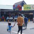 道の駅原鶴のひまわりフェア
