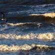検見川浜の朝夕、12月12日