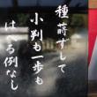 経営の一言 「種蒔かずして小判も一歩もはへることなし」 井原西鶴