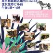 7月8日猫の里親会のお知らせ