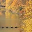 横川ダム 2