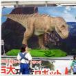 夏はじまる★第68回湘南ひらつか七夕まつり★