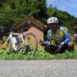 向日葵サイクリング