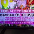 8/21・・めざましお花プレゼント本日2時まで