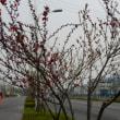 中国北京~ブラリ路線バス安心・便利途中下車の旅 路線図あれば勇気百倍
