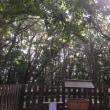 神宿る島宗像沖ノ島世界遺産 ✨ BBQで全員集合🍖