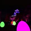 日本三大夜城 高知城の光の祭