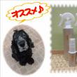 温泉から生まれた化粧水byパウハウス行徳店