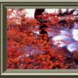 『紅葉景』 箱根山