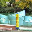 千代田区の一部公園禁煙化に喜びの声