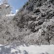 冷たい!冷たい! 12月9日(土)晴れ時々曇り