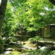 軽井沢茶会は初陣の席主で・・・