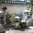 ゼロ泊2日、姫路城の旅。