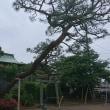 北川辺伊賀袋 浅間神社