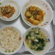 揚げ出し豆腐はよく食べていました。残菜は80gでした。
