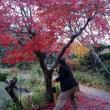 京都のご縁たび2日目は「南京都へ」