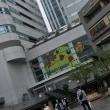 ポケモンin横浜