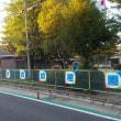 東近江・ローカル散歩「私は地元幼稚園の一期生」