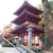 遠州三山の一つ・ 目の霊山 『油山寺』