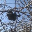 ブルーベリー防鳥棚の修理